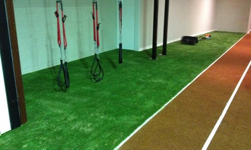 Artificial Grass Gym