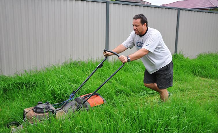 No Lawn Mowing