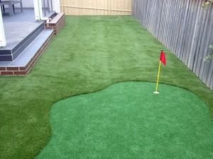 Backyard with Putt Putt Hole